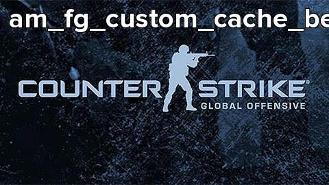 am_fg_custom_cache_beta3