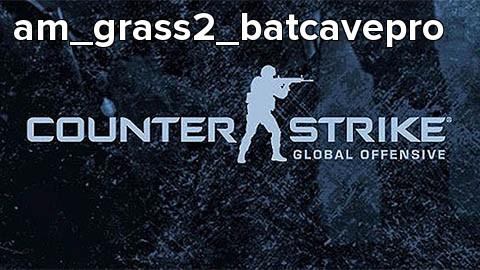 am_grass2_batcavepro